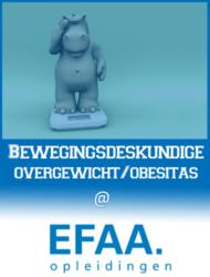 EFAA-Bewegingsdeskundige-overgewicht-obesitas-380x500